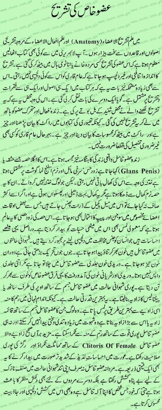 About Penis Anatomy in urdu