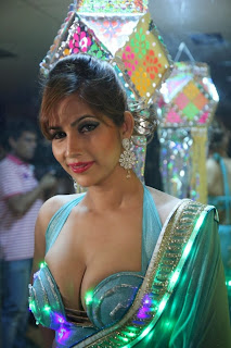 Actress Model Tanisha Singh Pictureshoot Stills for Diwali 2013 Special 0001