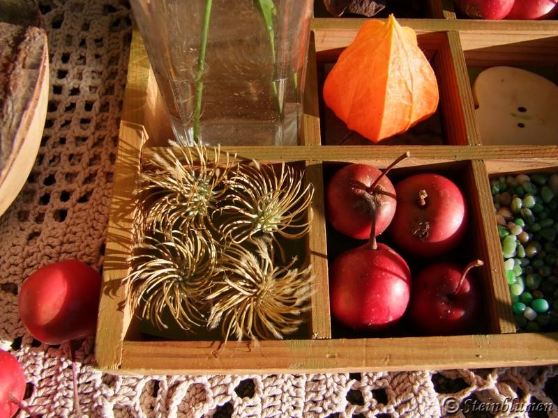 Clematis Fruchtstände dekorieren