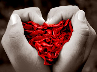 Presentación fondo el amor, plantillas, modelos, formatos, ejemplos, Power Point