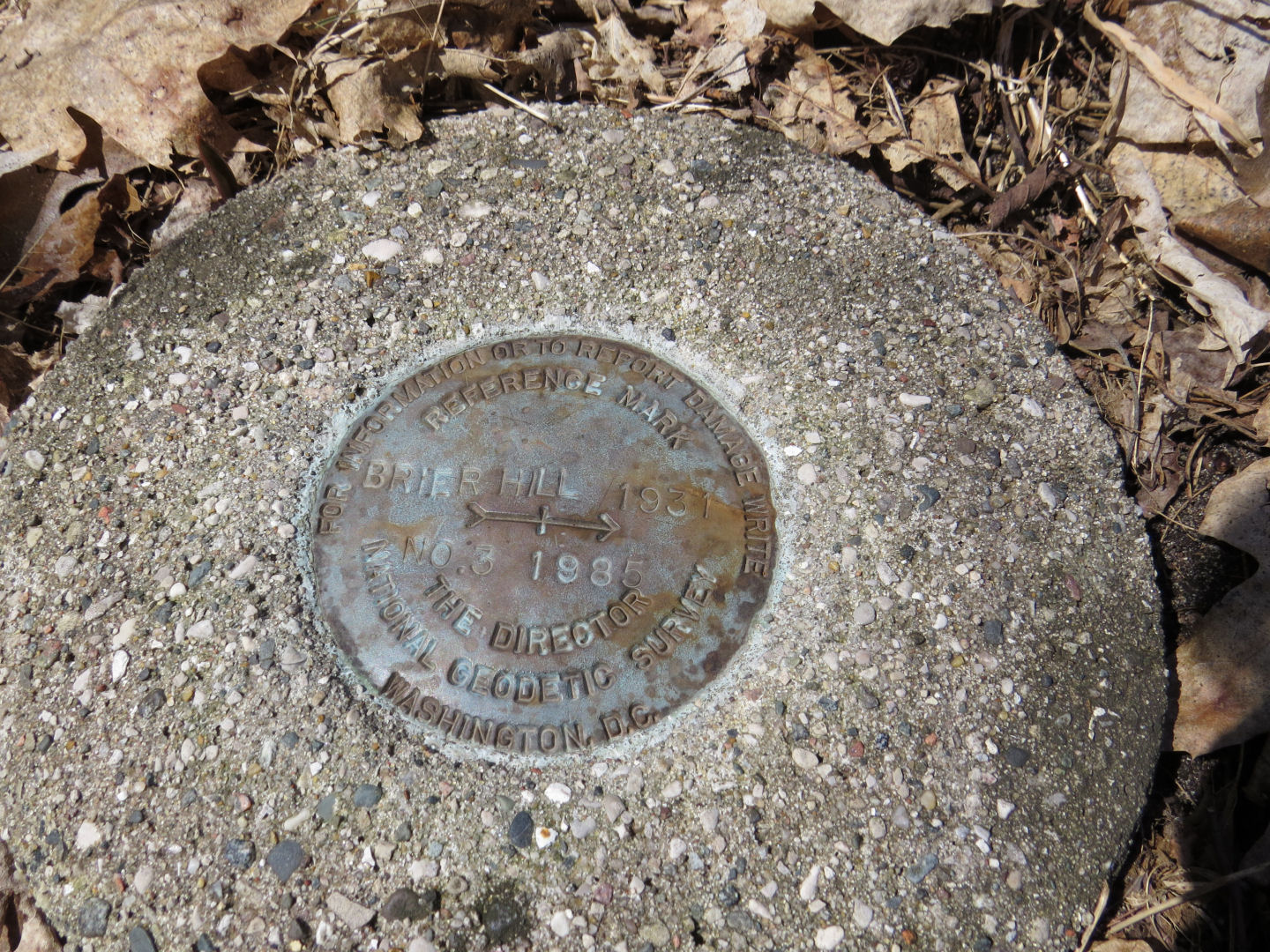 Briar Hill benchmark