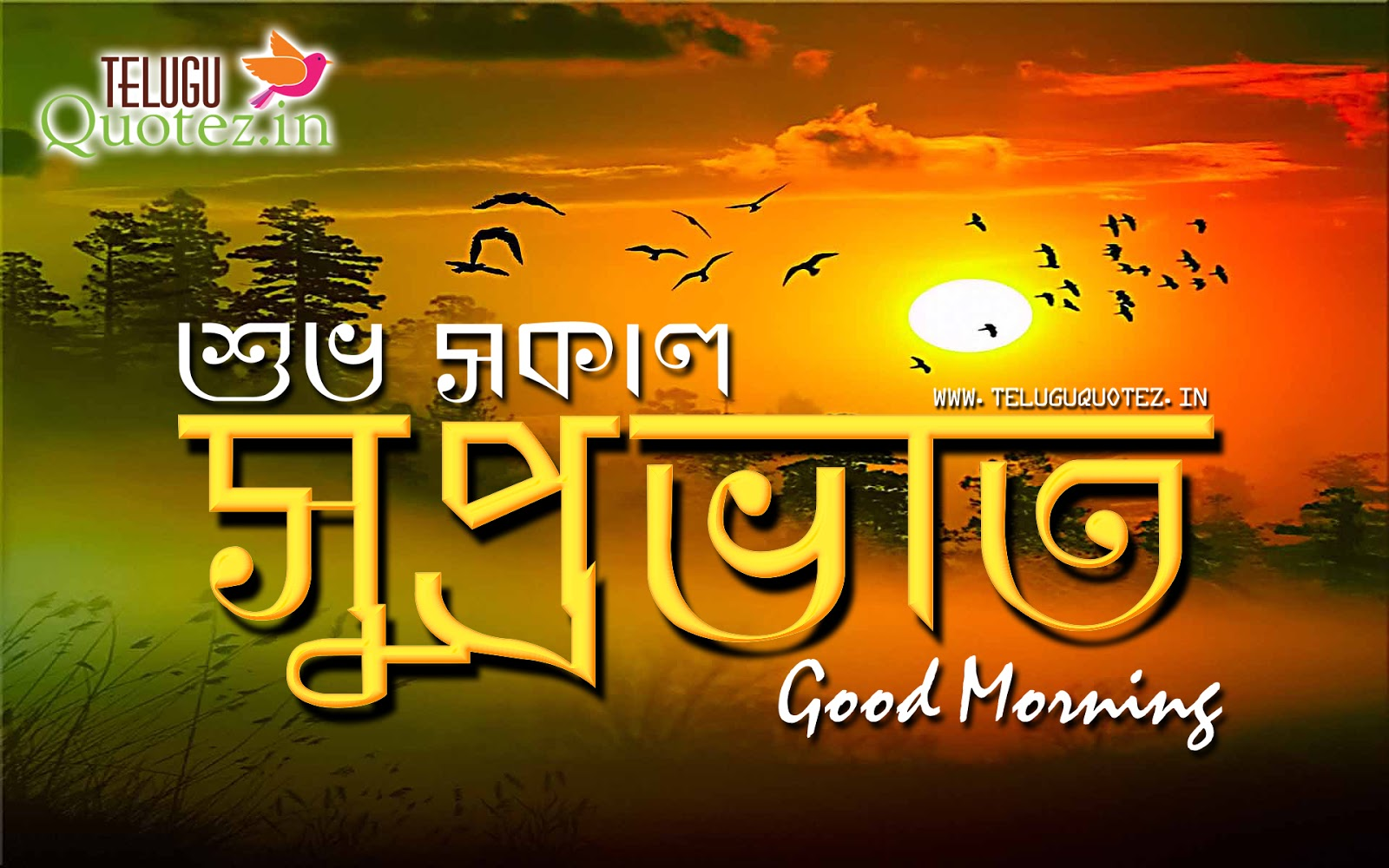 Latest Top Shuvo Sokal Wallpapers for free download