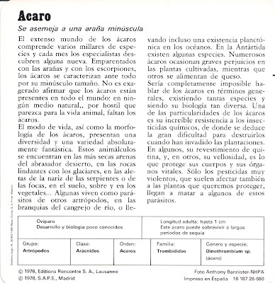 Fichas Safari Club, características de el Acaro