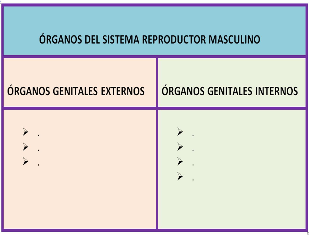 El Sistema reproductor Sexto