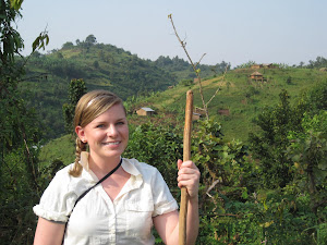Becca tracking Gorillas at Bwindi Impenetrable forest Uganda