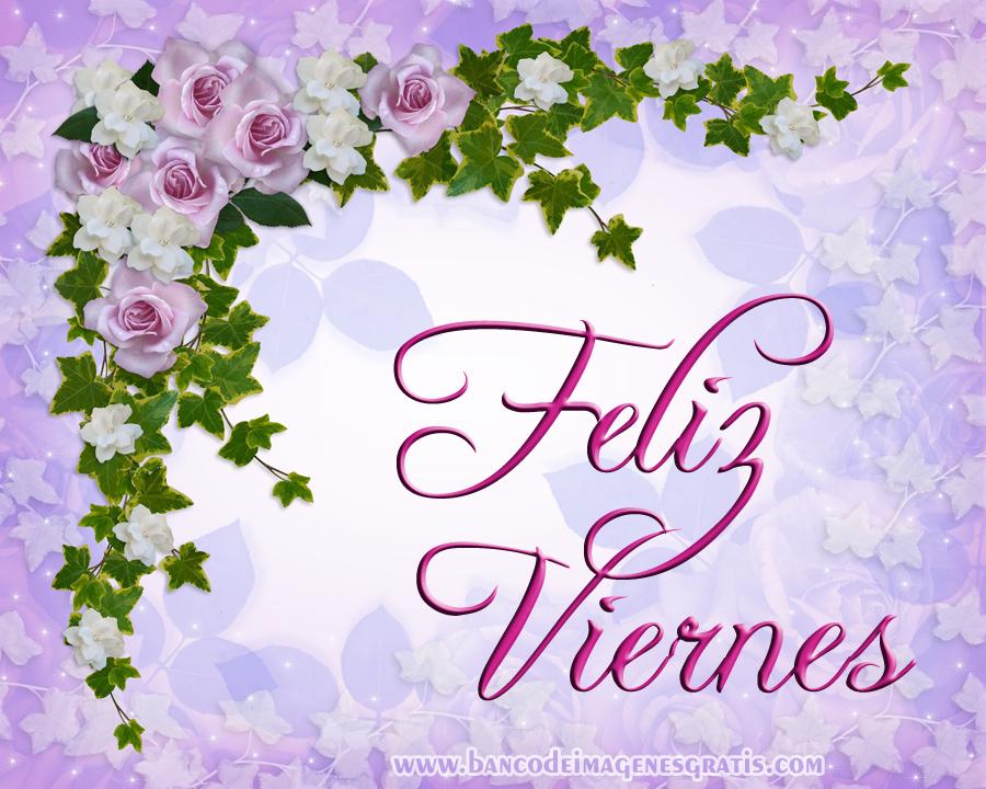 Rosa Blanca Imágenes gratis en Pixabay - Imagenes Con Rosas
