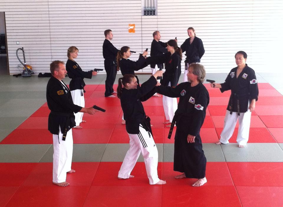 Gimnasio han kuk hapkido taekwondo video y galer a de for Gimnasio telde