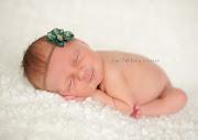 Meet Ellie {Houston Texas Newborn Baby Photographer Portraits}
