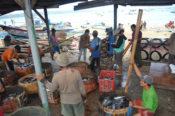 Aktifitas Nelayan Kedonganan