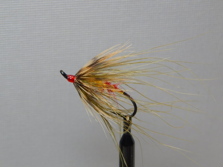 A Trout Spey