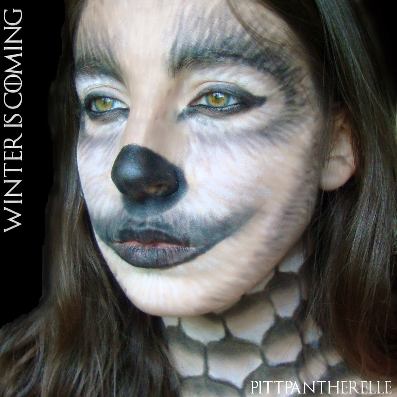 Pittpanthermua game of thrones makeup collaboration game of thrones makeup collaboration baditri Images