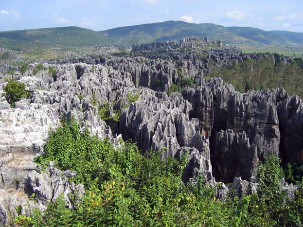The South China Karst Landscape