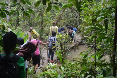 Tips jika akan melakukan perjalanan di Hutan