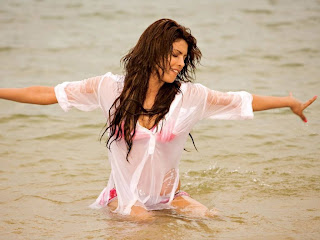 Beautiful top Indian model Priyanka Chopra Hot HD wallpapers 2012
