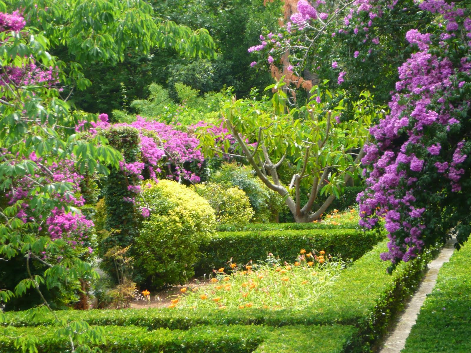 Le jardin des couronnes : Majorque