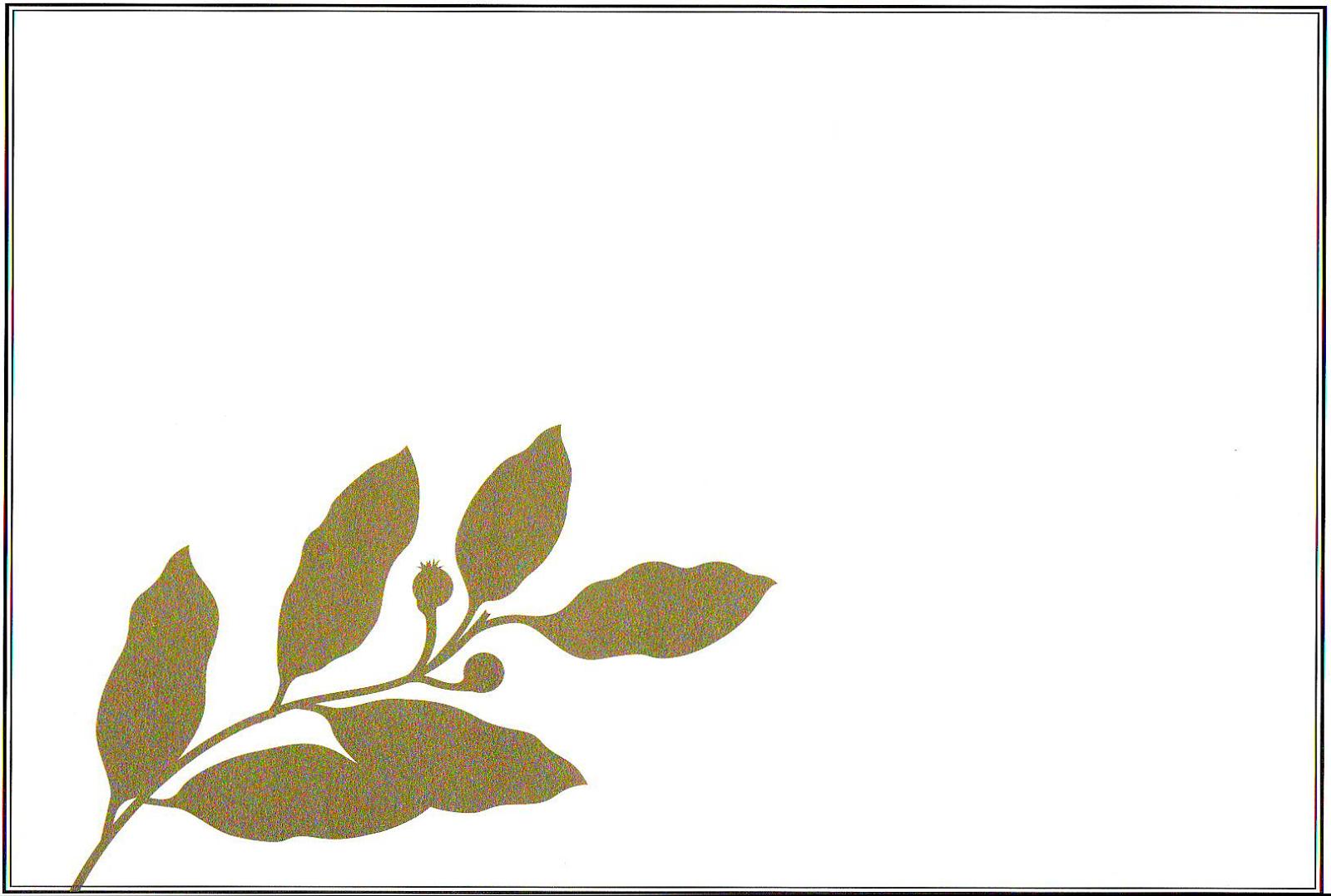gambar Bingkai untuk Sertifikat atau Ijazah