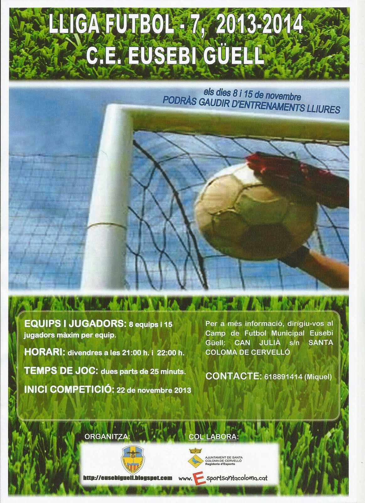 LLIGA  FUTBOL  7  -  2.013-14