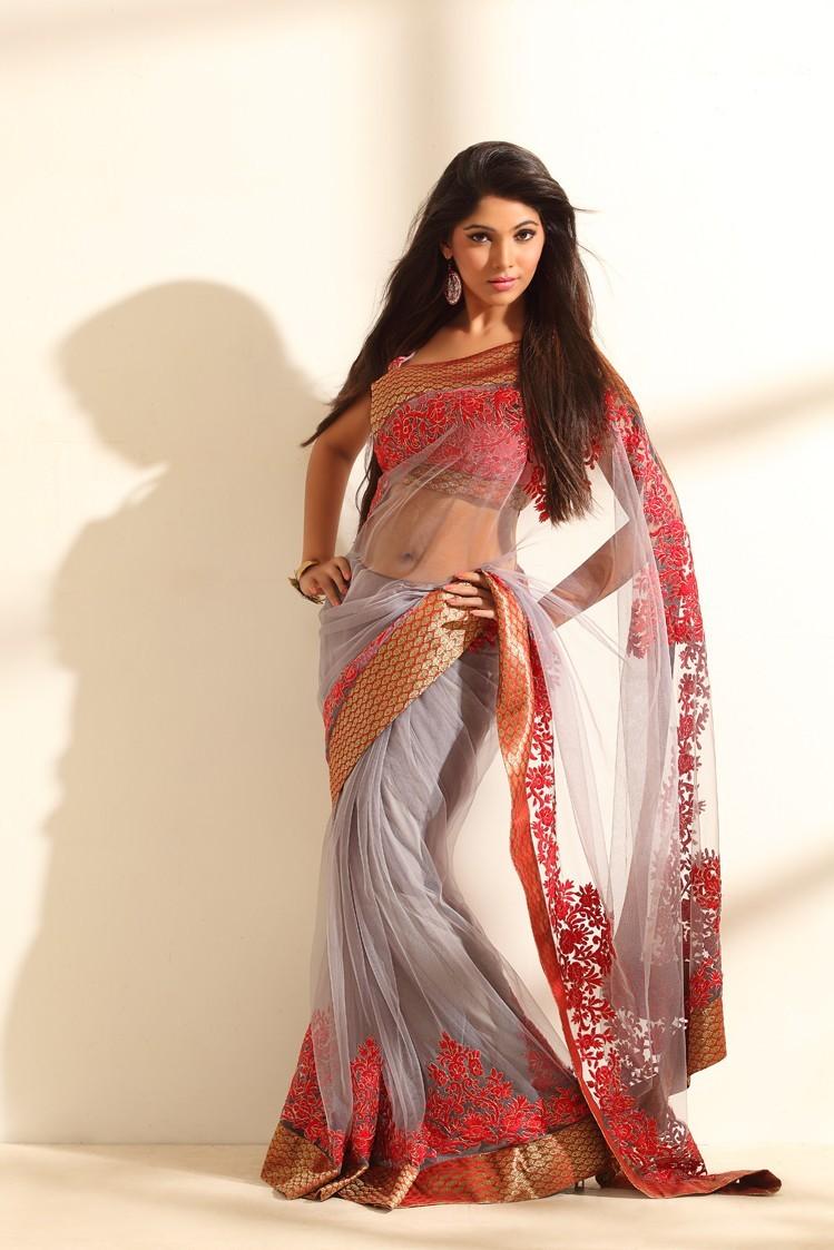 Bhanu latest photoshoot in saree