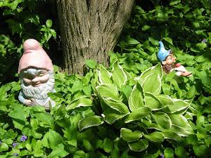 Gnome Hideaway