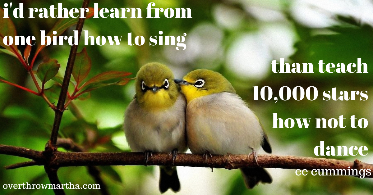 I'd rather learn from one bird how to sing than teach 10,000 stars how not to dance. ee cummings