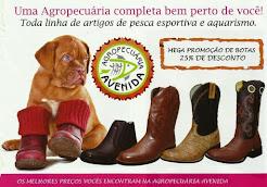 AGROPECUÁRIA AVENIDA