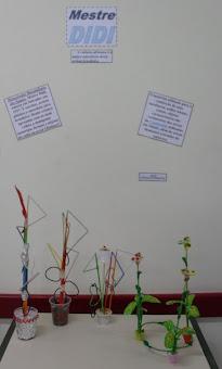 Aula de Artes - Esculturas do Mestre Didi