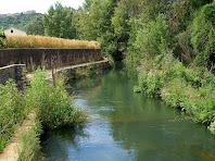 El Canal del Paperer