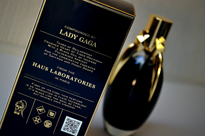 Lady Gaga Fame Eau de Parfum Perfume Spray EDP Celebrity Fragrances for Women Blog Reviiew