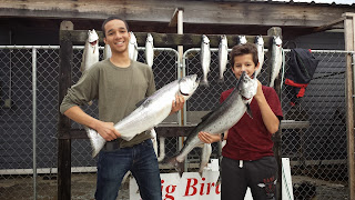 sw michigan fishing, great lakes fishing, salmon tackle, salmon and trout, coho salmon