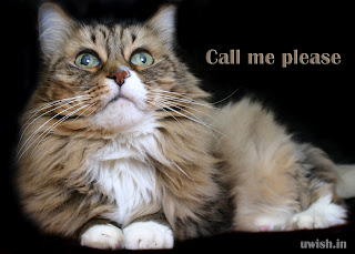 Call Me please - I'm waiting E greeting cards and wishes
