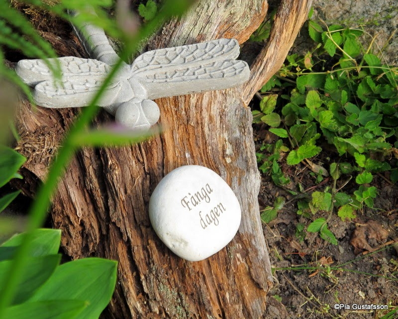 Trädgård O Sånt : Simsalabim prydnad konst i trädgården