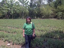 Kunjungan ke Kebun Alfalfa 12 September 2012