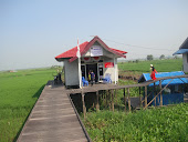 Perpustakaan Desa