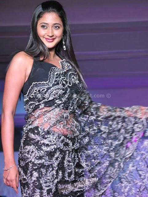 bollywood, tollywood, hot, Telugu, actress, kaniha, navel, sree, pics