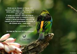 Imagens Ecocultura