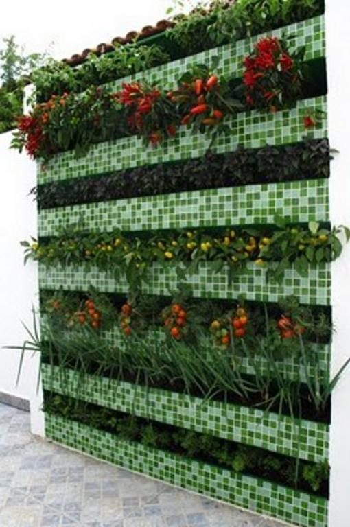 Mini hortas para pequenos espa os e apartamentos modelos for Modelos de mini apartamentos