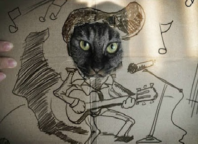 cat playing guitar, funny, amusing, awesome