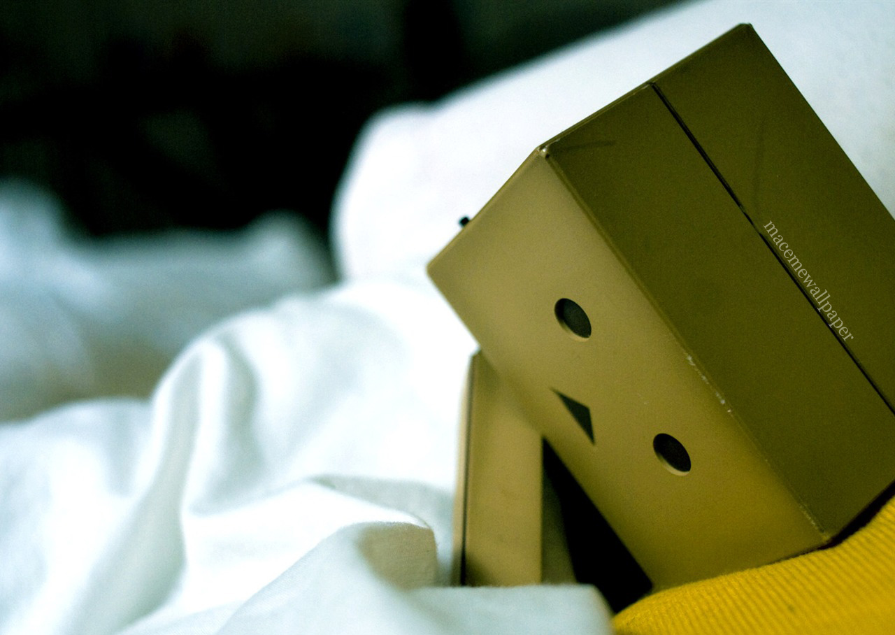 danbo wallpaper maceme wallpaper