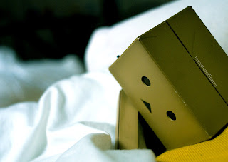 Danbo Wallpaper hd sleep