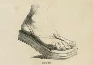 Historia del zapato.Crepidas