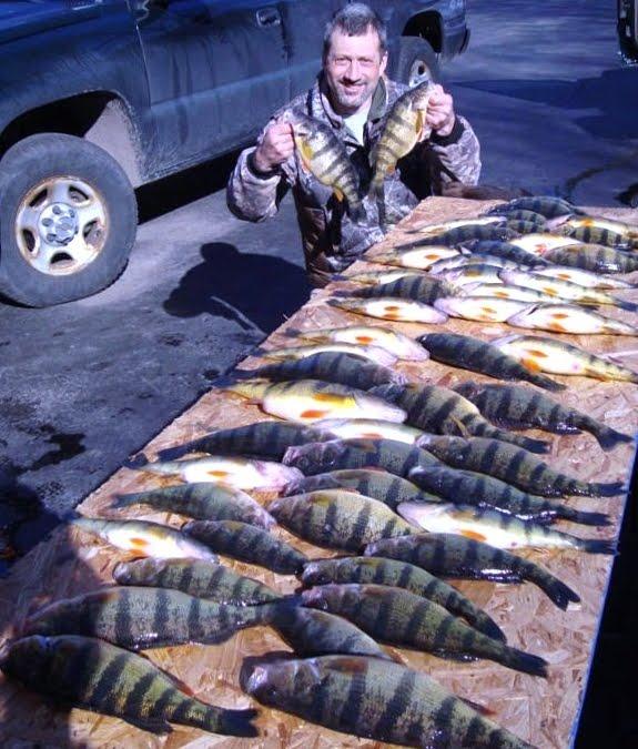 Apthorpes fishing hunting adventures hunting for oak for Seneca lake fishing report