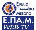 Δικτυακή Τηλεόραση