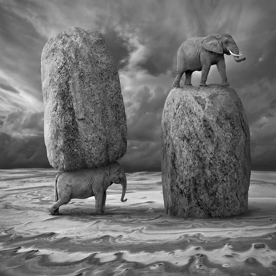 Photo Manipulations by Dariusz Klimczak4