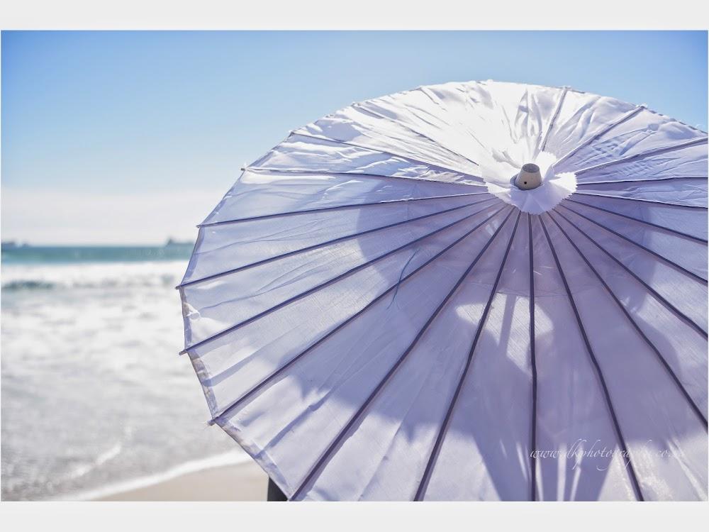 DK Photography LASTBLOG-073 Stefanie & Kut's Wedding on Dolphin Beach, Blouberg  Cape Town Wedding photographer