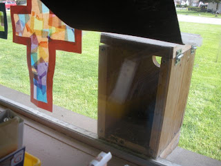 classroom birdhouse for viewing life cycles