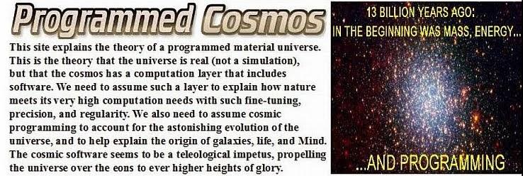 Programmed Cosmos
