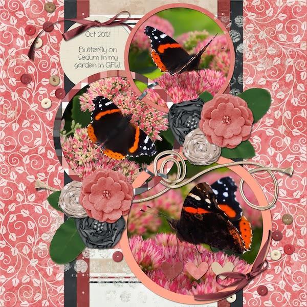 http://2.bp.blogspot.com/-PRgjt9ccdbM/Ux82E0oCiiI/AAAAAAAAAEE/wohMNuV0B0o/s1600/3bigcirclesButterflies.jpg