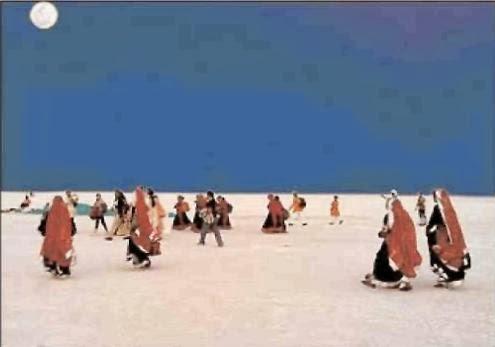 White Sands Kutch Rann Utsav 2013 - 2014