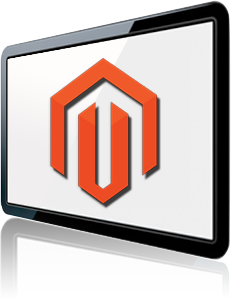 magento ecommerce web site development