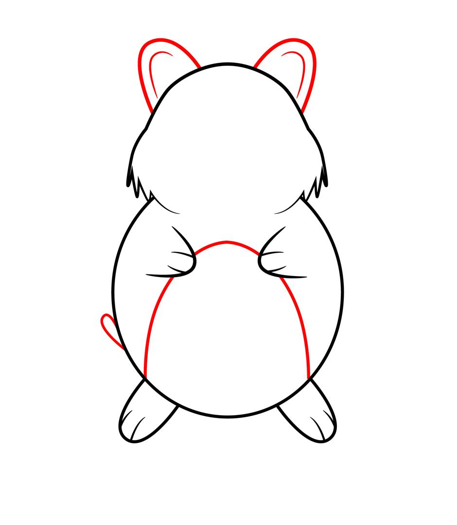 how to draw a real hamster